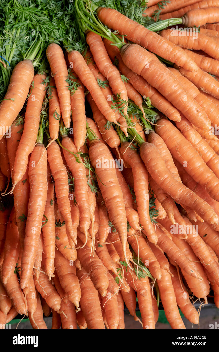Carrots for sale on a vegetable stall at Stroud farmers market. Stroud, Gloucestershire, England - Stock Image