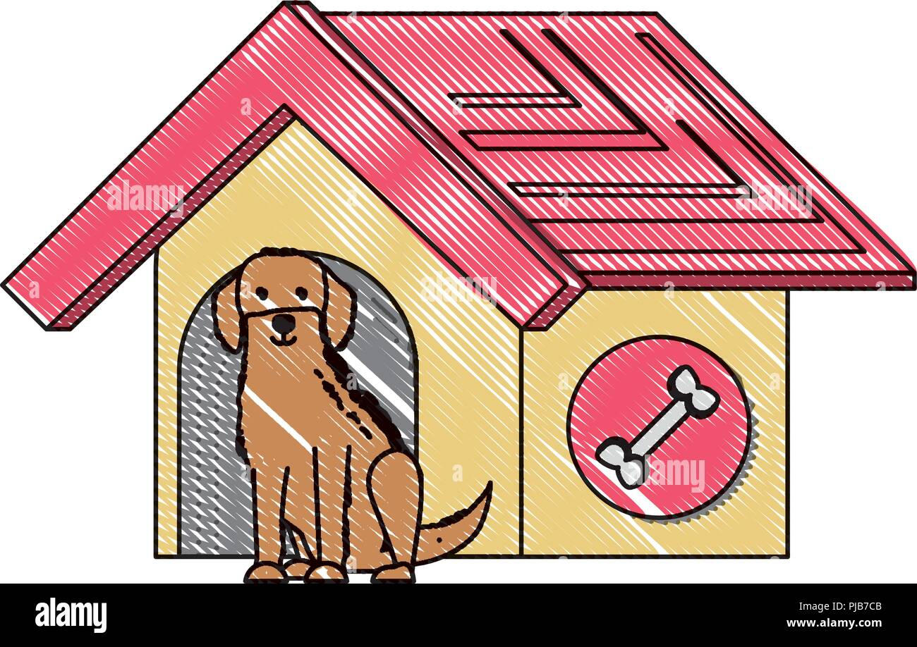 pet house with cute labrador dog over white background, vector illustration - Stock Image