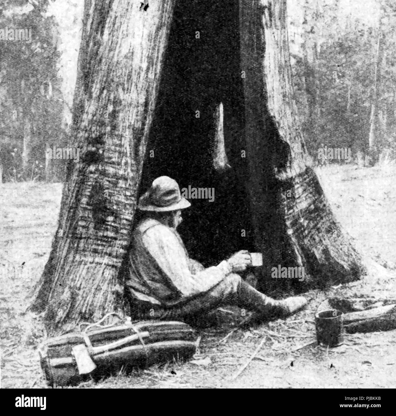 A 1920 image of an Australian settler (swag-man or gold miner ) living in a makeshift hut made from a hollow tree trunk Stock Photo