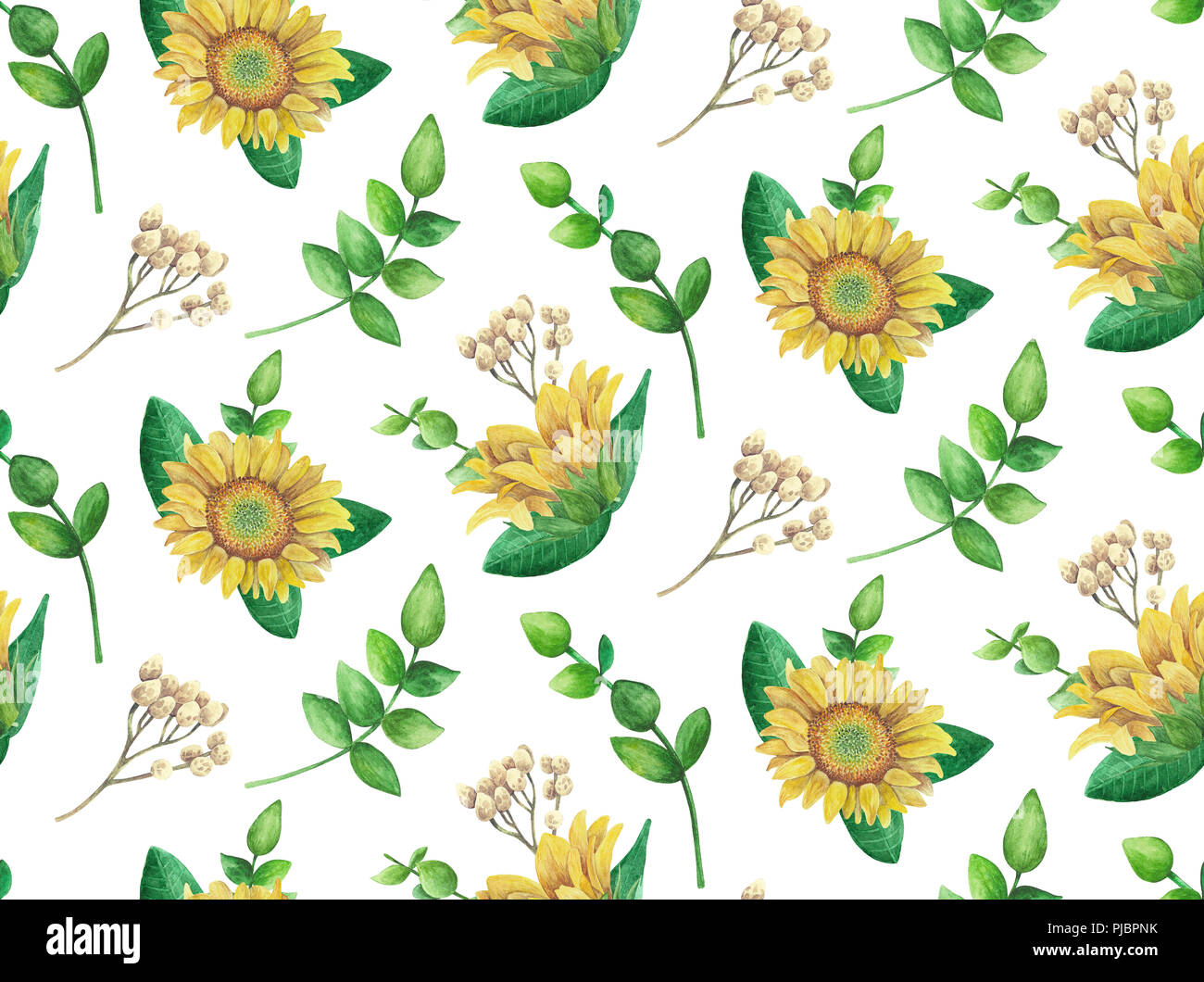 Sunflowers pattern. Watercolor rustic flowers. Country floral - Stock Image