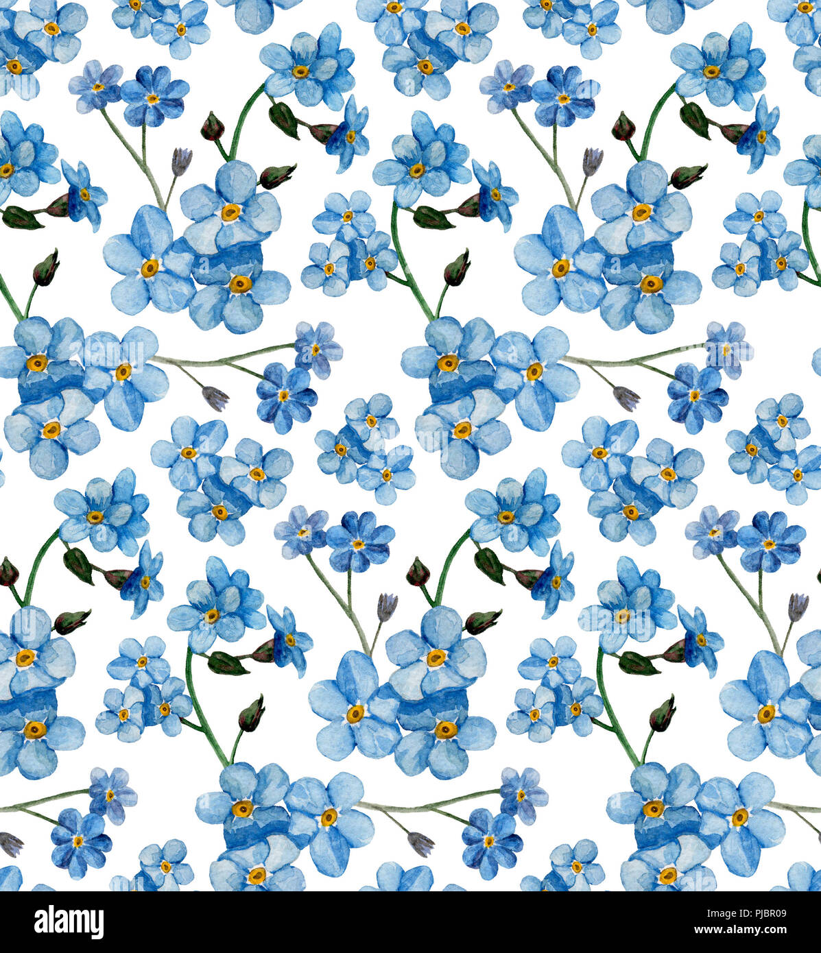 Watercolor Forget Me Nots Pattern Blue Flowers Background Stock