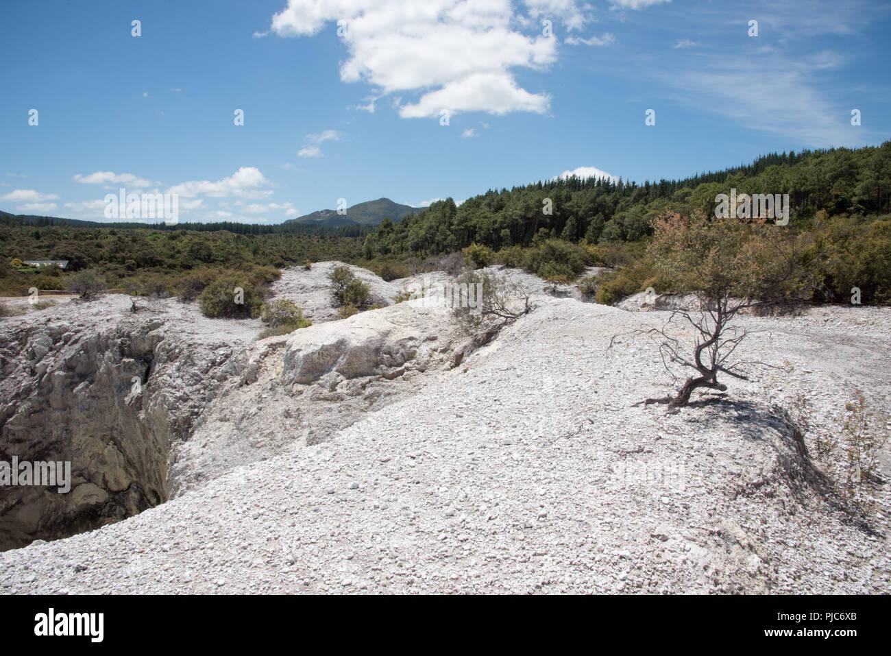 Rugged terrain and lush greenery at the Wai-o-Tapu geothermal area in Rotorua, New Zealand - Stock Image