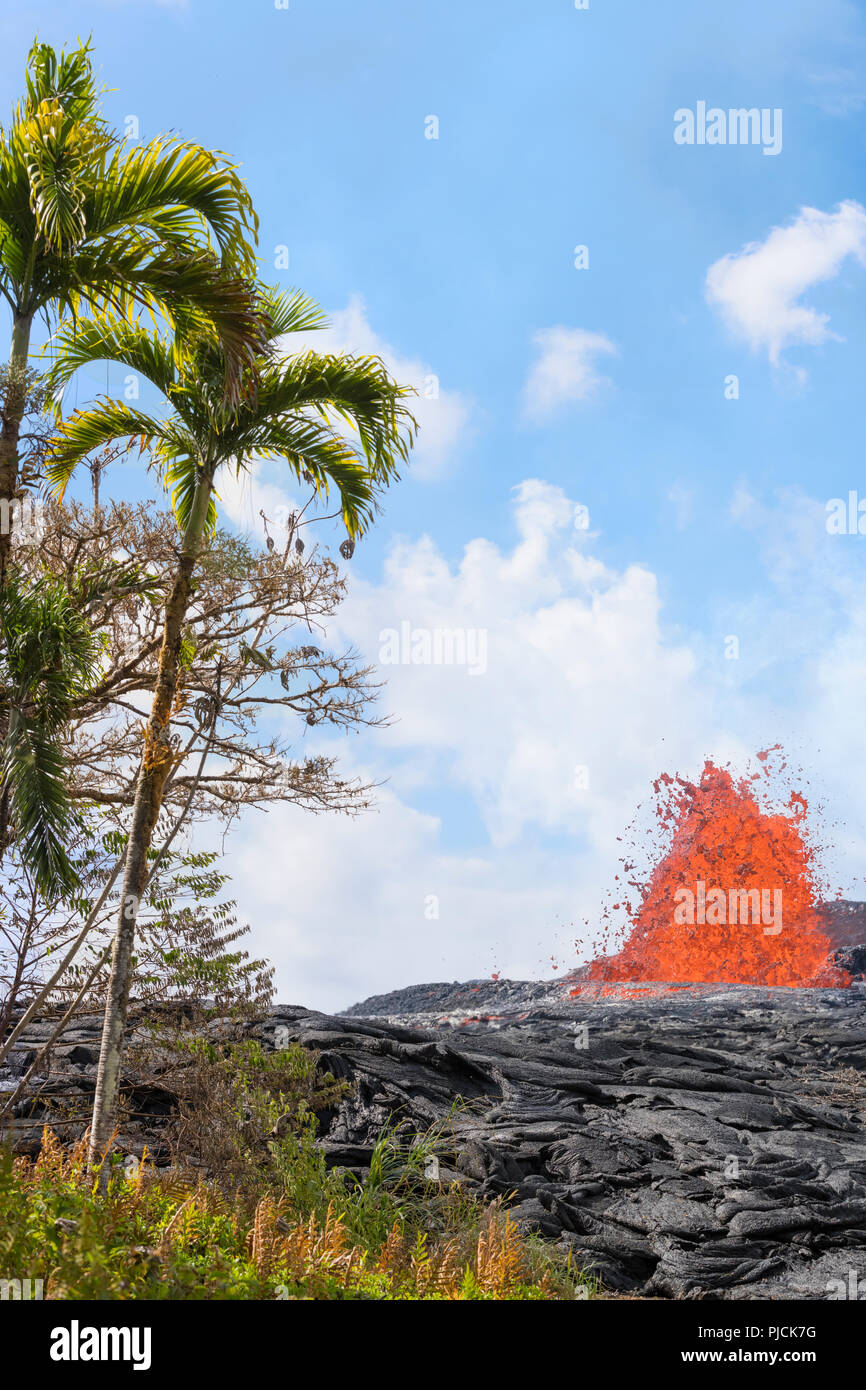 lava from Kilauea Volcano erupts from a fissure on Pohoiki Road, just outside of Leilani Estates subdivision, near Pahoa, Puna District, Hawaii Island - Stock Image