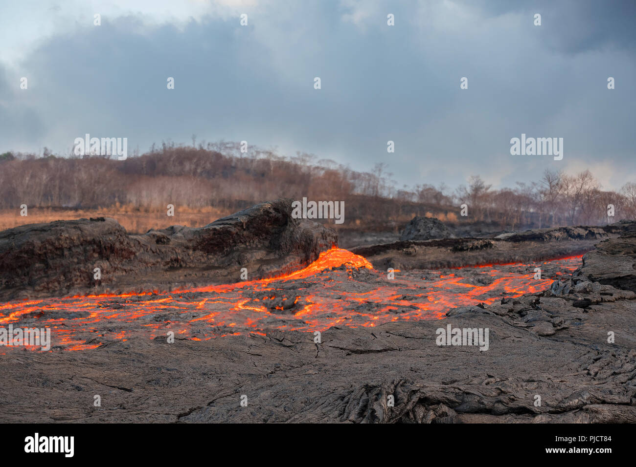 a river of lava flows through Kapoho, Hawaii after erupting from fissure 8 of the Kilauea Volcano east rift zone in Leilani Estates near Pahoa - Stock Image
