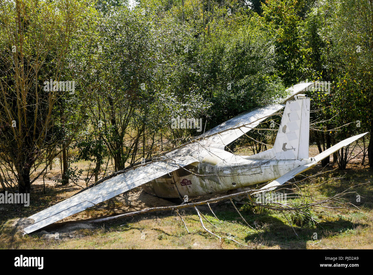 Crashed plane, Birds Park, Villars Les Dombes, France Stock Photo