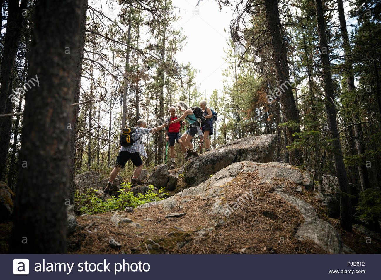 Mature couples hiking on forest rocks - Stock Image