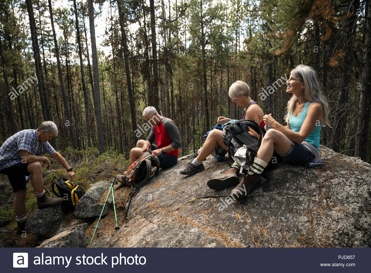 Mature couples taking a break from hiking, resting on forest rock - Stock Image