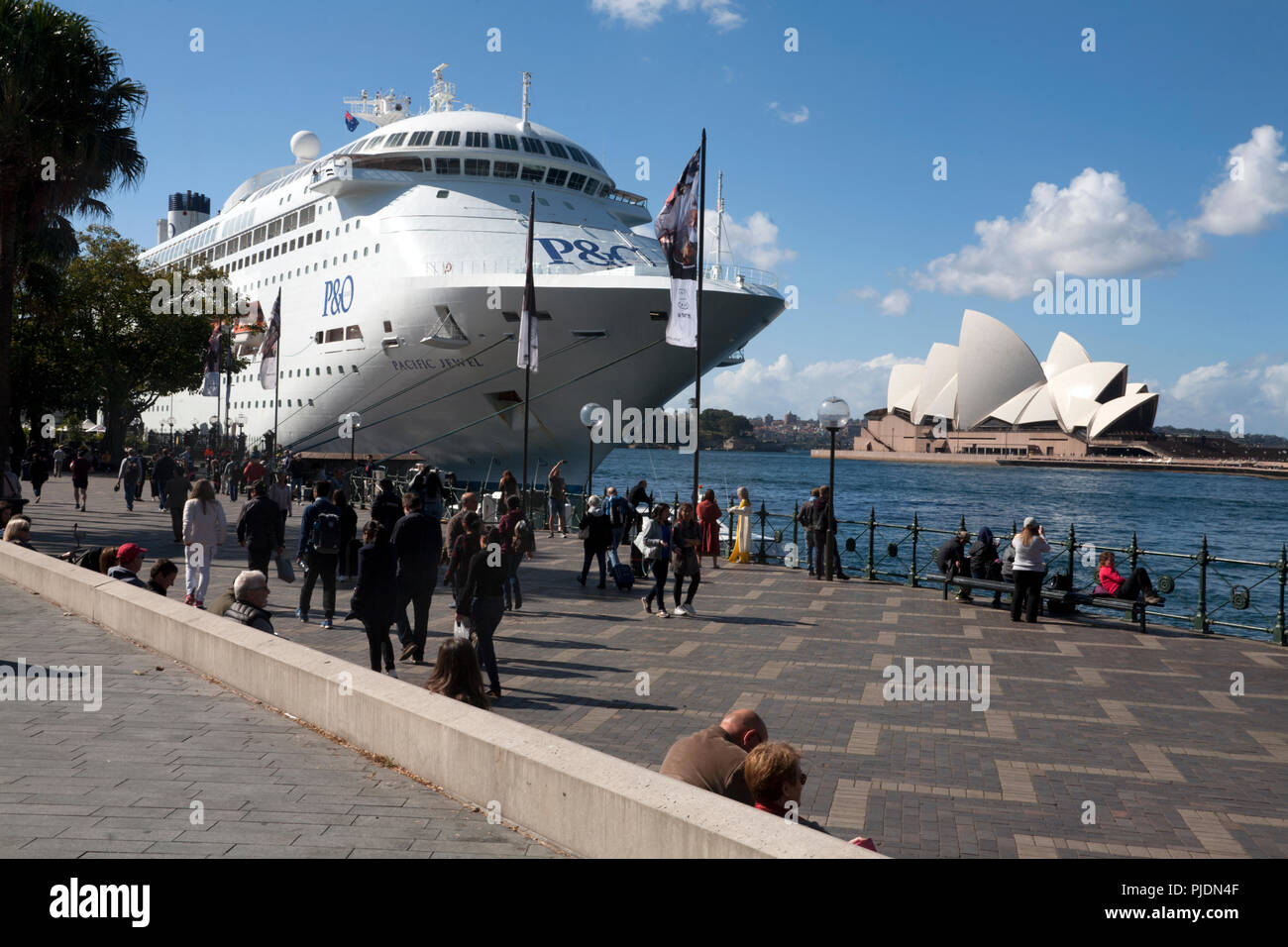 p&o cruise liner pacific jewel circular quay sydney new south wales australia - Stock Image