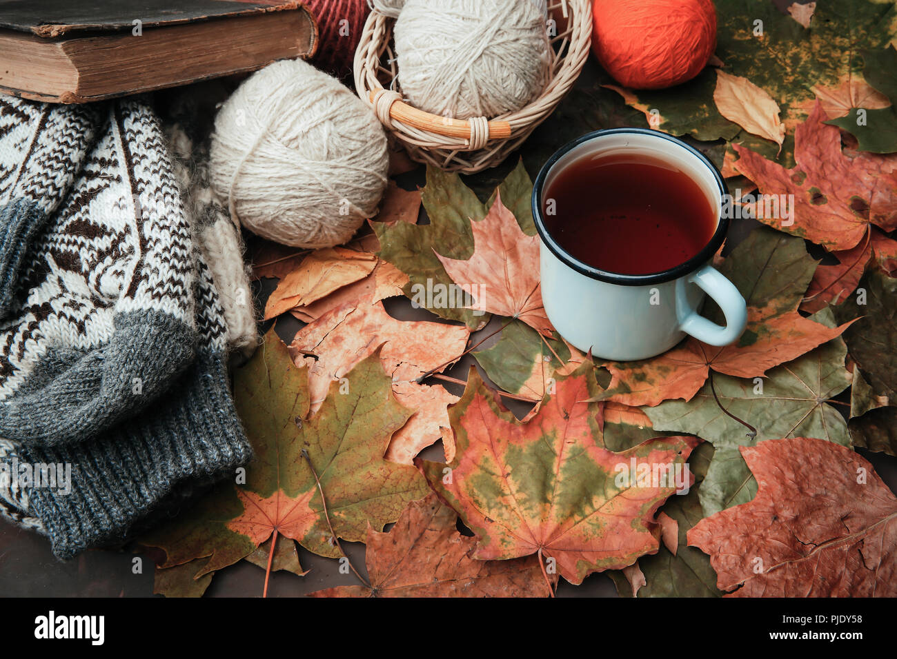Knitting threads in a park on leaves - Stock Image