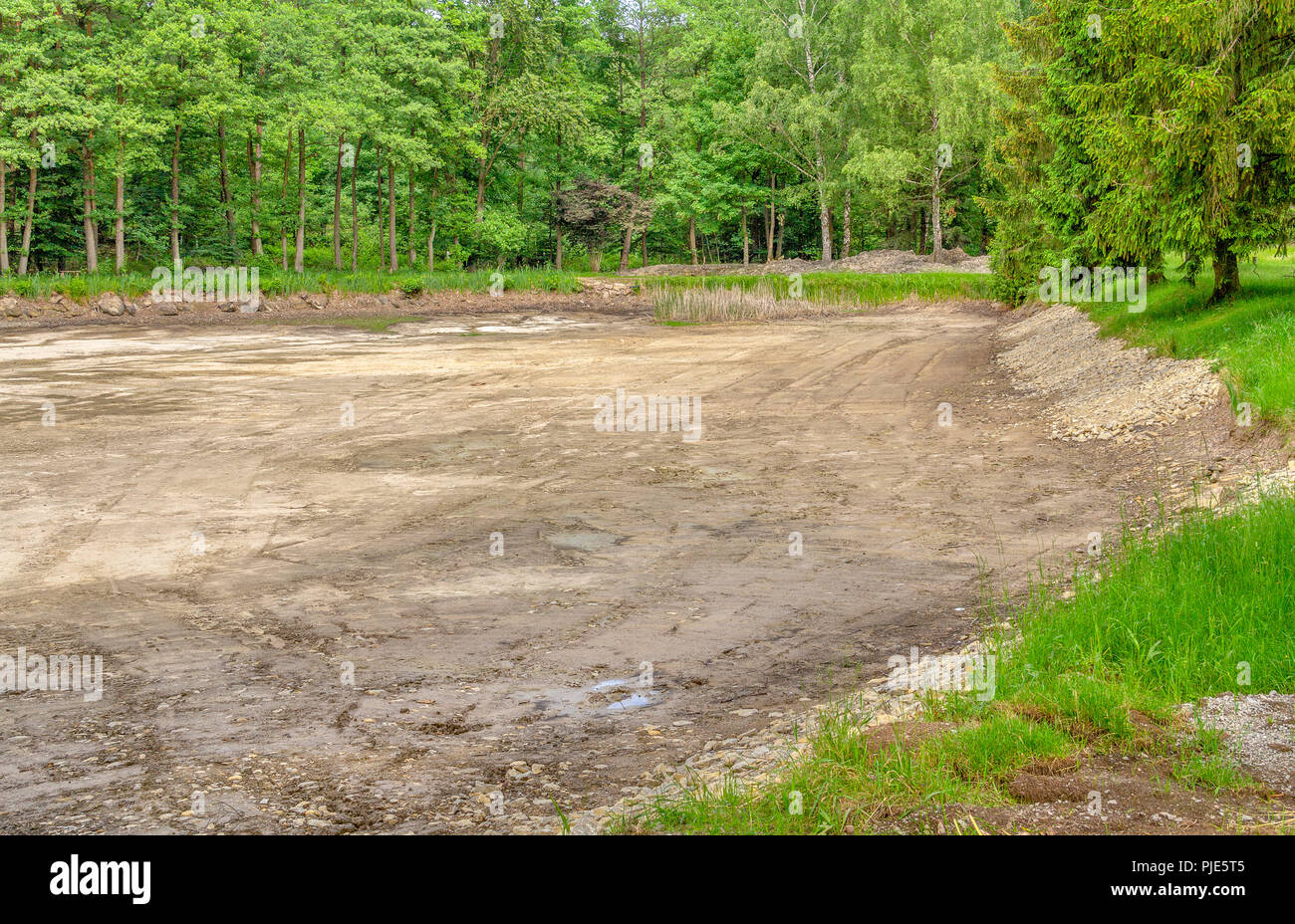 dewatered and excavated lake detail near a forest at spring time Stock Photo