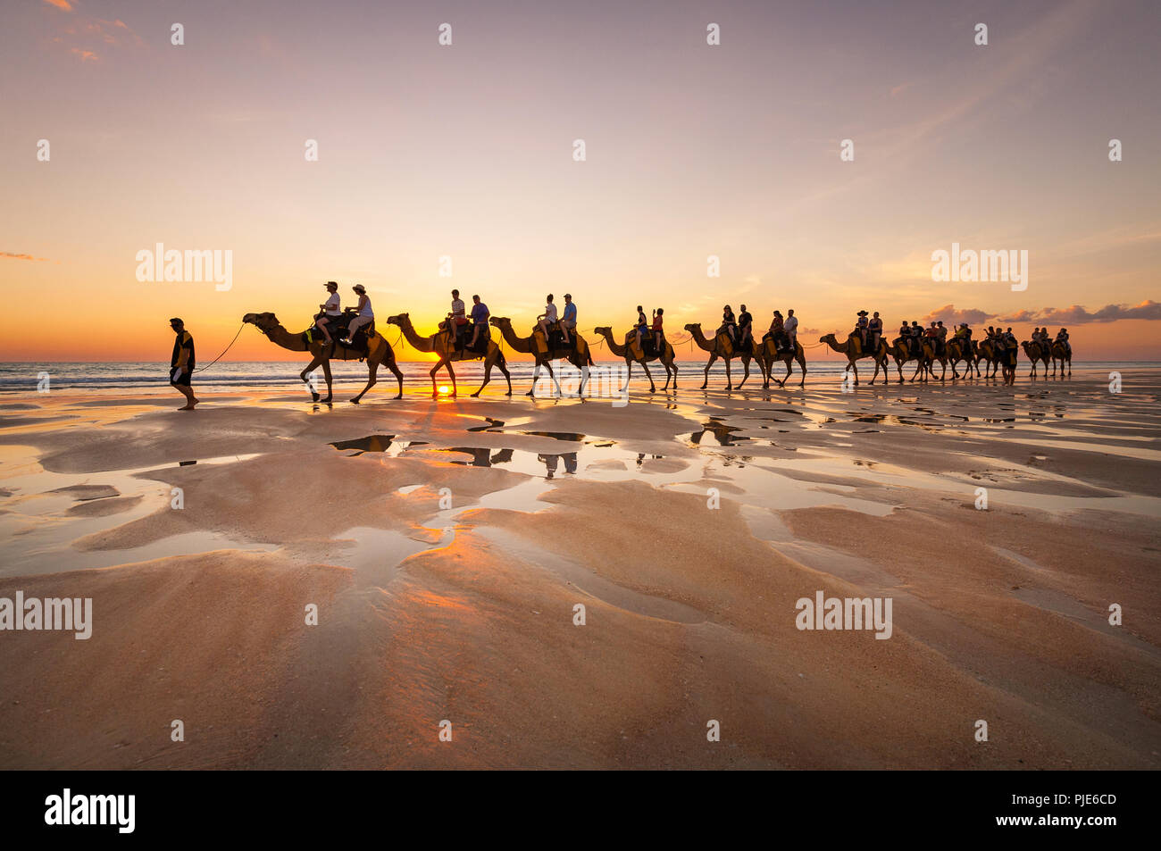 Camel Tour at famous Cable Beach in Broome. - Stock Image