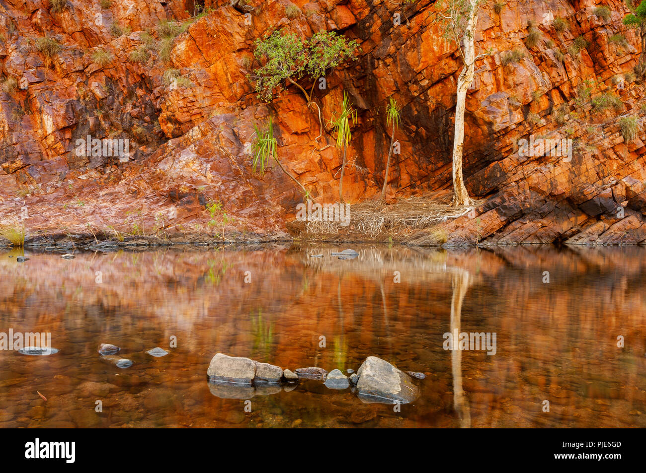 Reflections in Moonshine Gorge at El Questro Station. - Stock Image
