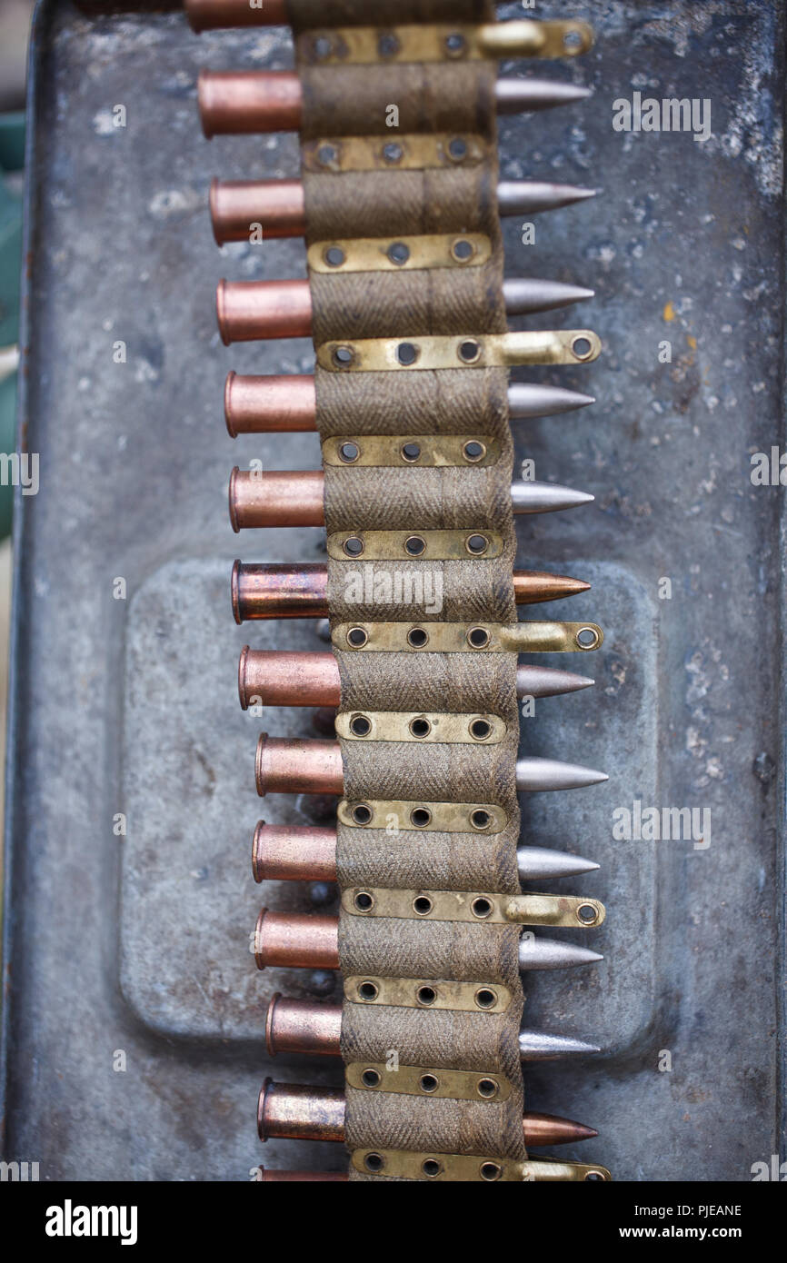 amunition belt for WWI german machine gun MG 08 in ammo can - Stock Image