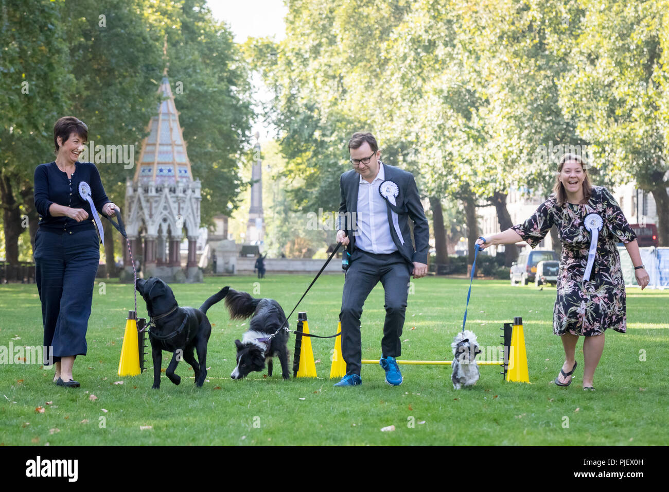 London, UK. 6th September, 2018. 26th Annual Westminster Dog of the Year. Credit: Guy Corbishley/Alamy Live News Stock Photo