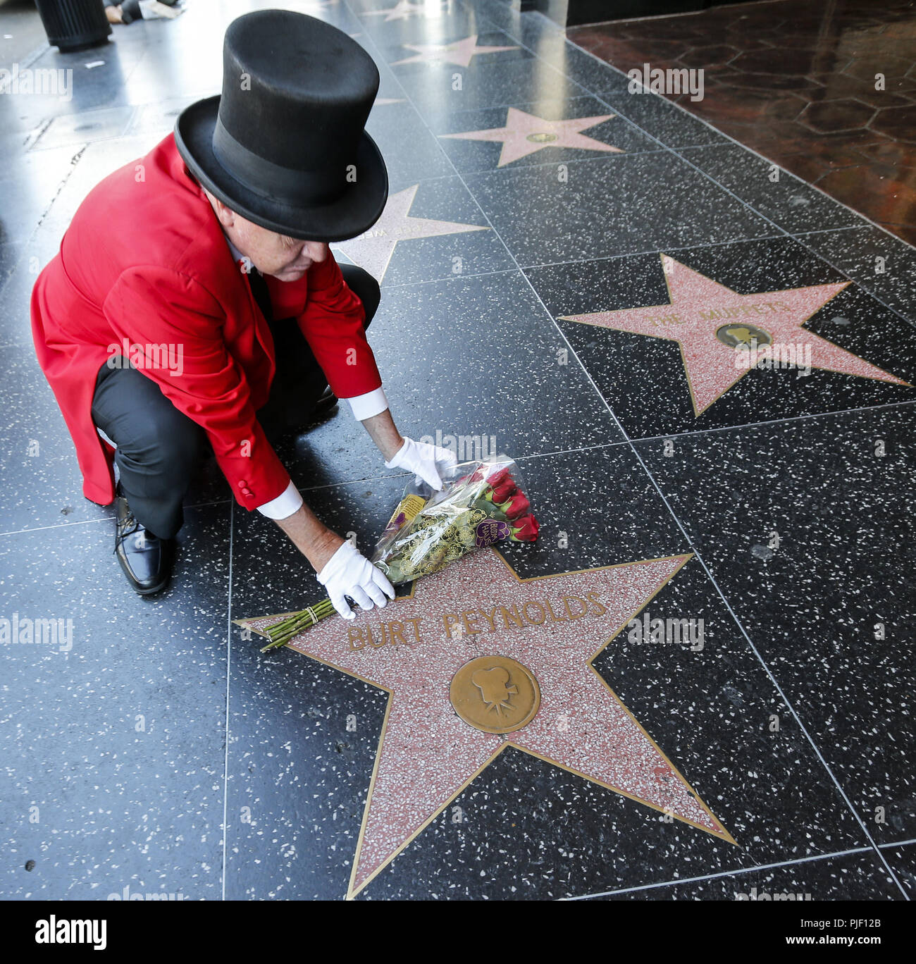 Los Angeles, California, USA. 6th Sep, 2018. Gregg Donovan places flowers on Burt Reynolds's star on the Hollywood Walk of Fame, in Los Angeles, Thursday Sept. 6, 2018. Reynolds died at Jupiter Medical Center in Florida at age 82. Credit: Ringo Chiu/ZUMA Wire/Alamy Live News - Stock Image