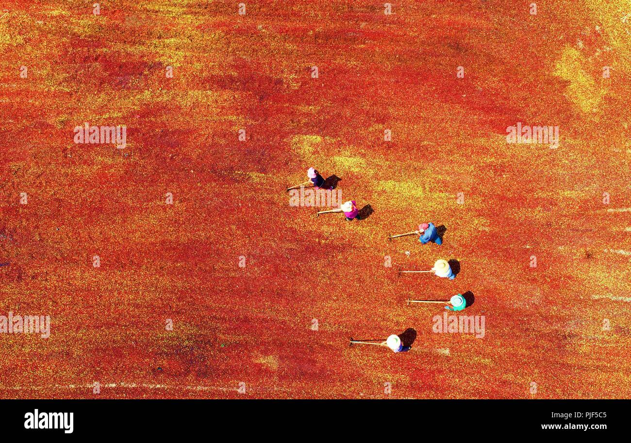 Linyi, China. 7th Sep 2018. Aerial photo shows people airing the newly-harvested wild jujube in Yinan County, east China's Shandong Province, Sept. 6, 2018. (Xinhua/Du Yubao) (ry) Credit: Xinhua/Alamy Live News - Stock Image