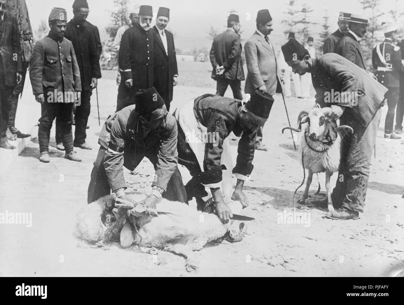 Turks sacrificing animals before battle - Stock Image