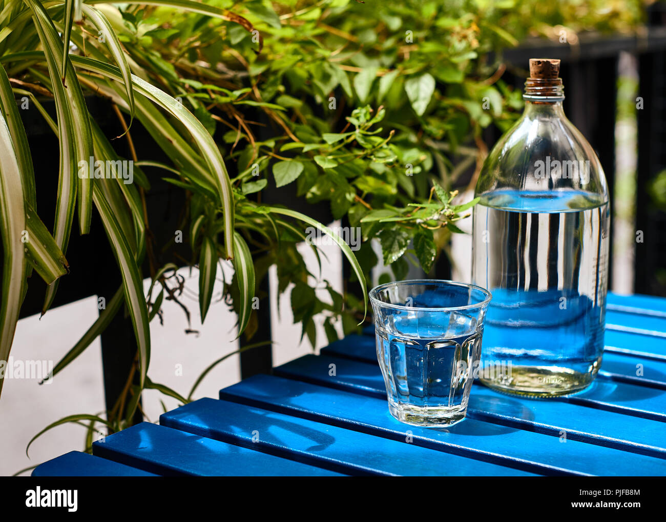 The glass bottle of drinking water on the blue table in the sunny day - Stock Image