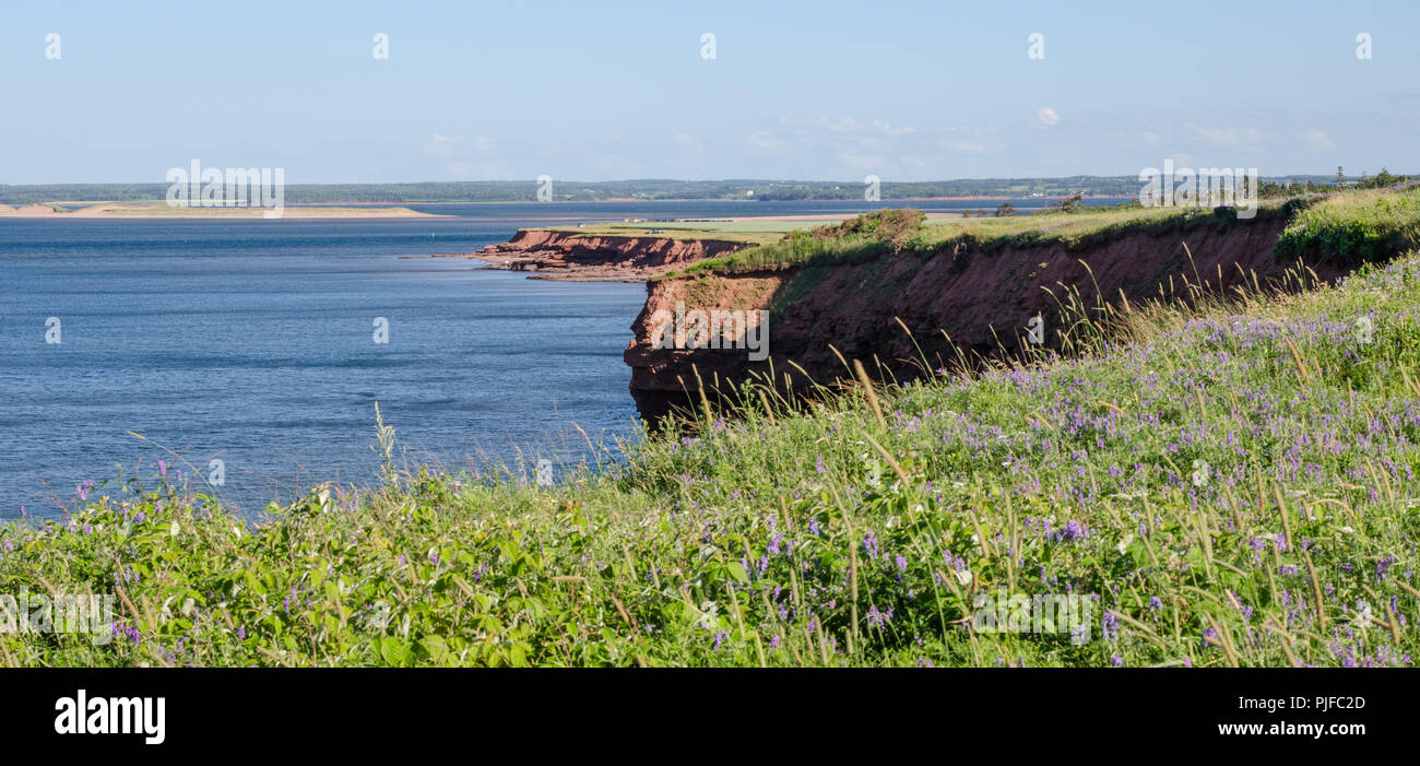 Part of Cavendish Beach is visible in the distance across New London Bay. - Stock Image