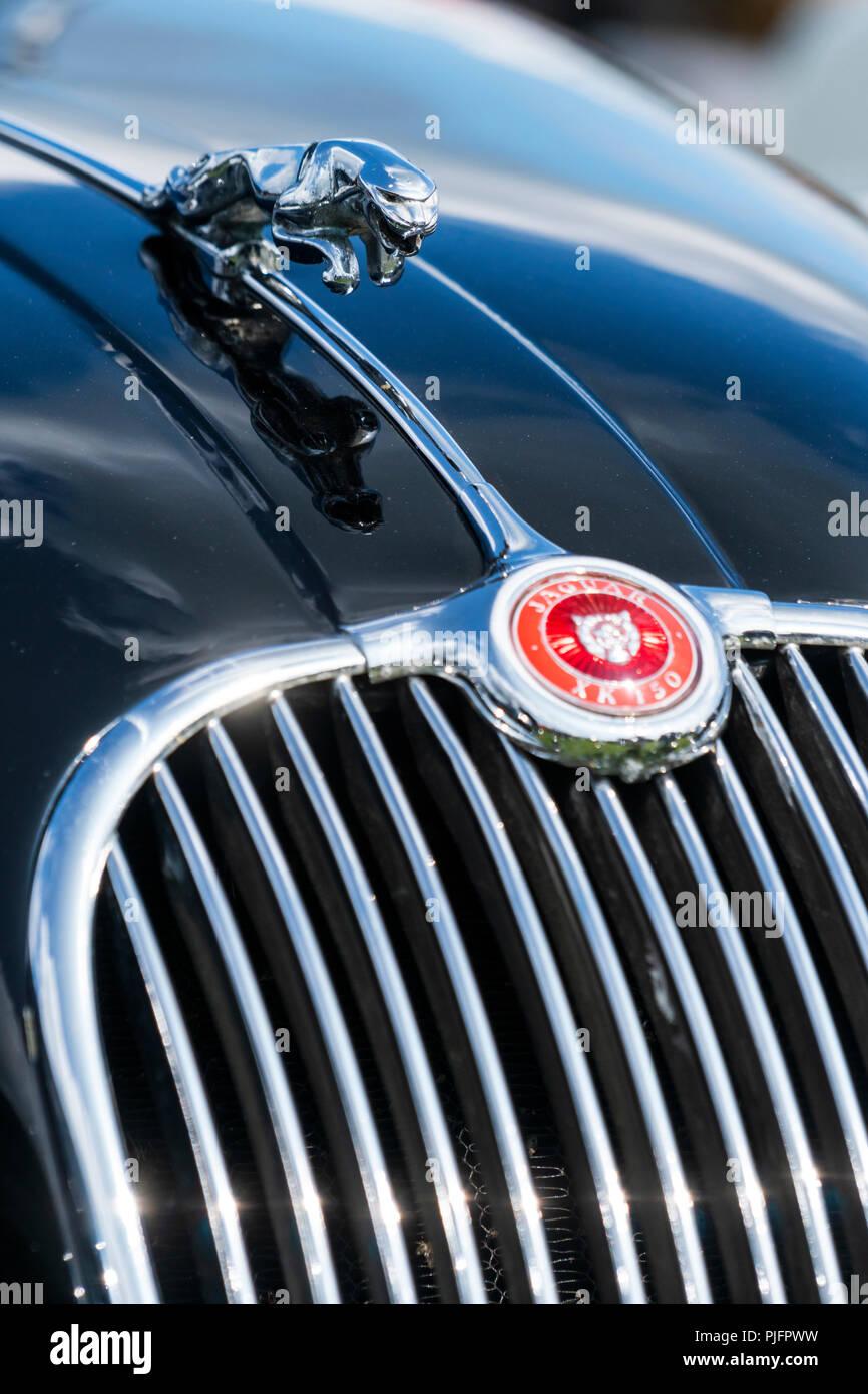 Leaping jaguar bonnet ornament on a Jaguar XK 150 - Stock Image