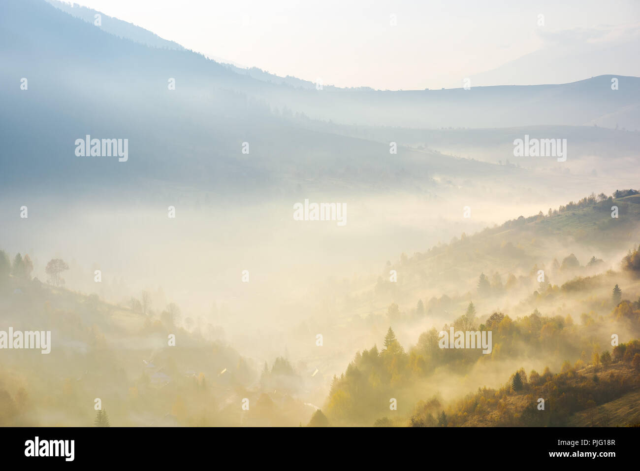 valley in fog at sunrise. bursts of light come through haze among the trees down the hill. wonderful autumn atmosphere in mountains - Stock Image