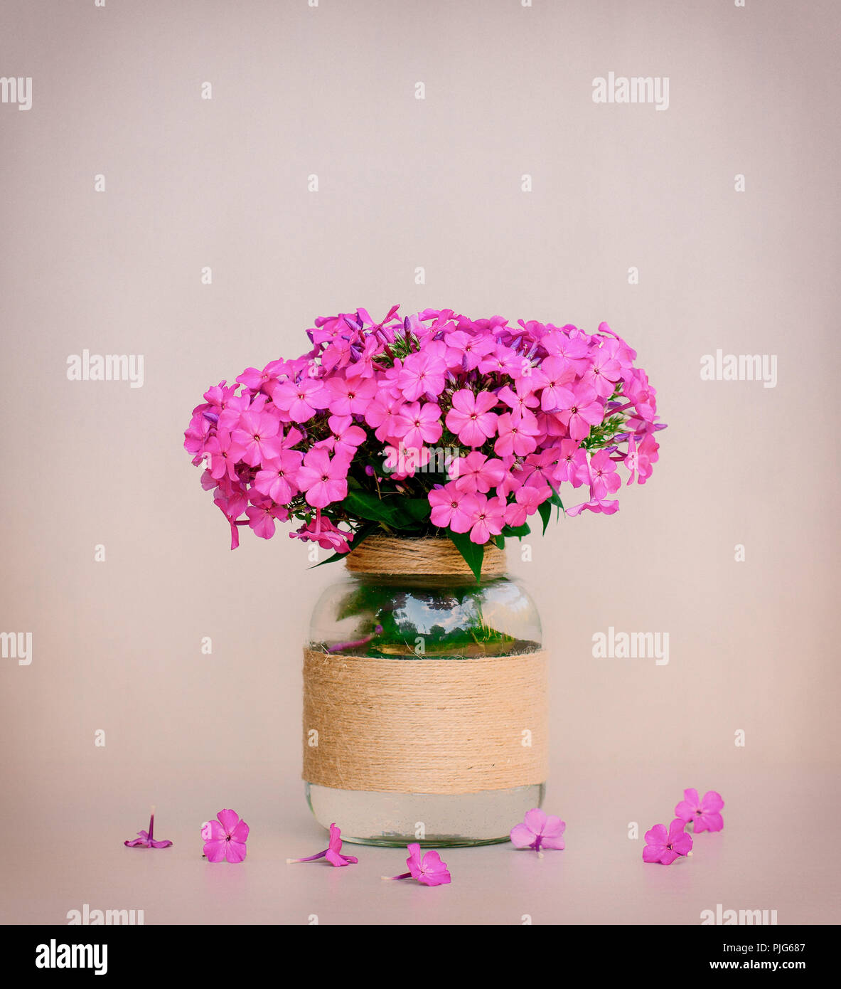 A Bouquet Of Flowers Phlox In A Homemade Glass Vase Closeup On Pink