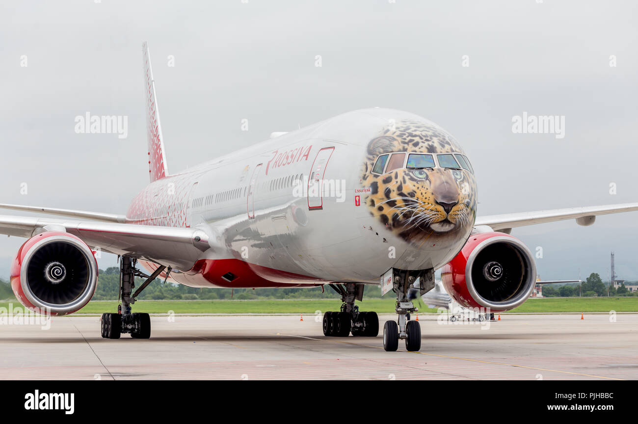 Russia, Vladivostok, 08/10/2018. Passenger airplane Boeing 777-300 of Rossiya Airlines on the runway. Fuselage is painted as a face of Far Eastern leo - Stock Image