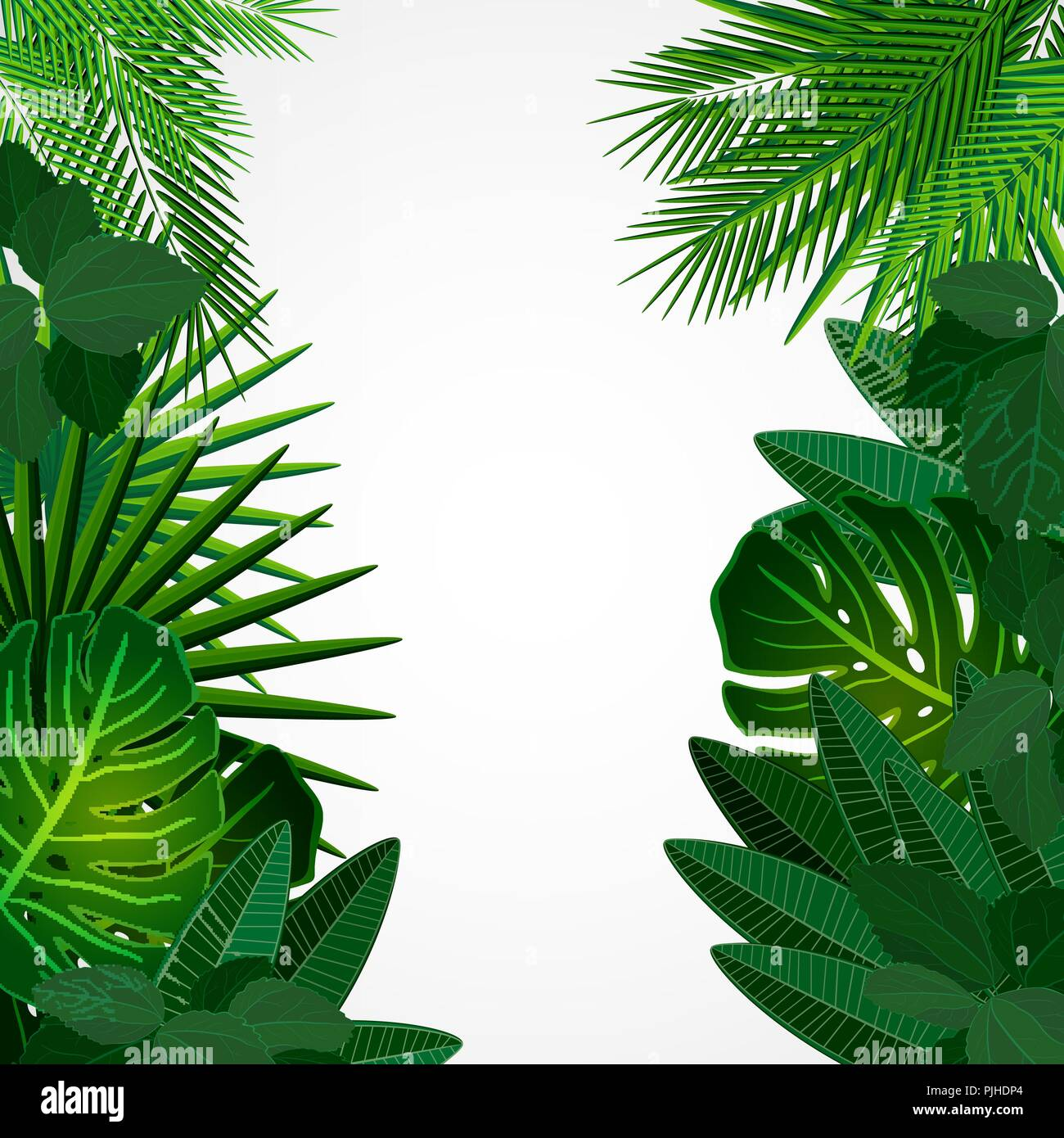 Tropical Leaves Floral Design Background Stock Vector Image Art Alamy Download 26,559 tropical free vectors. https www alamy com tropical leaves floral design background image217972220 html
