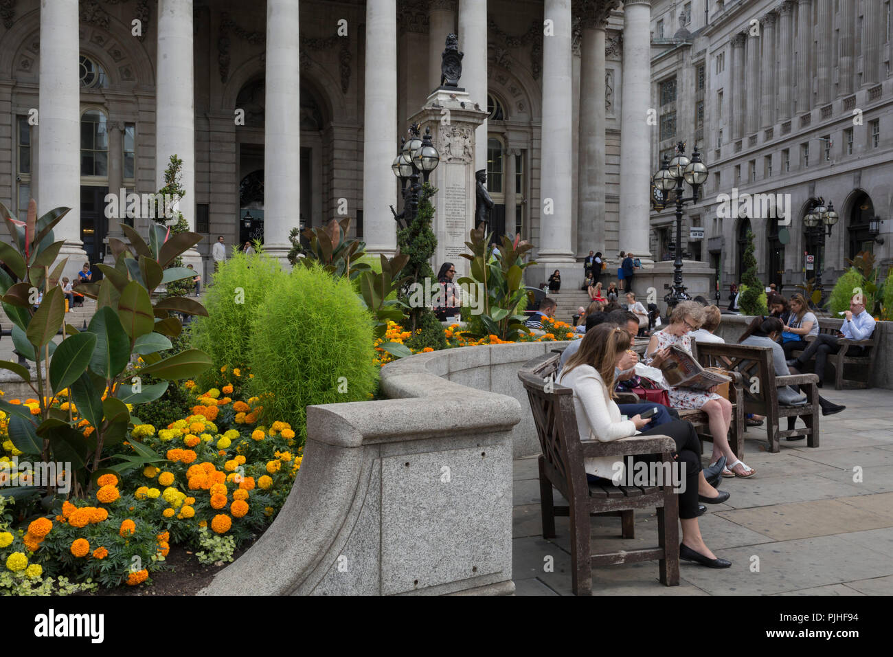 Yellow and orange marigolds in full bloom outside the Royal Exchange at Bank Triangle in the City of London - the capital's financial district, on 3rd September 2018, in London England. At the top of Doric and Ionic columns with their ornate stonework, powerfully strong lintels cross, bearing the load of fine artistry and carvings which feature the design by Sir William Tite in 1842-1844 and opened in 1844 by Queen Victoria whose name is written in Latin (Victoriae R). It's the third building of the kind erected on the same site. The first Exchange erected in 1564-70 by sir Thomas Gresham but  - Stock Image