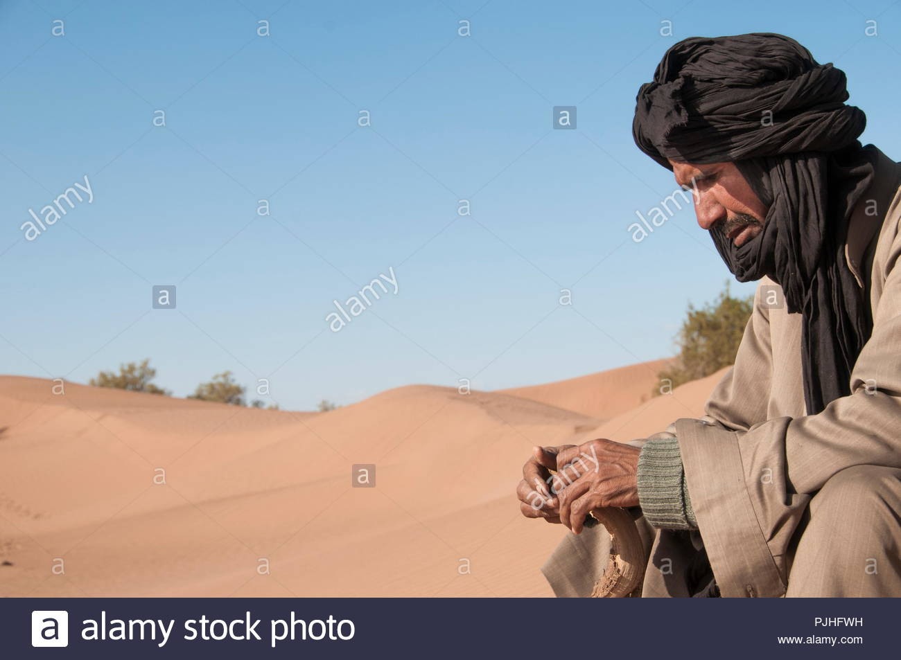 Morocco, Western Sahara, camel driver in the sand desert - Stock Image