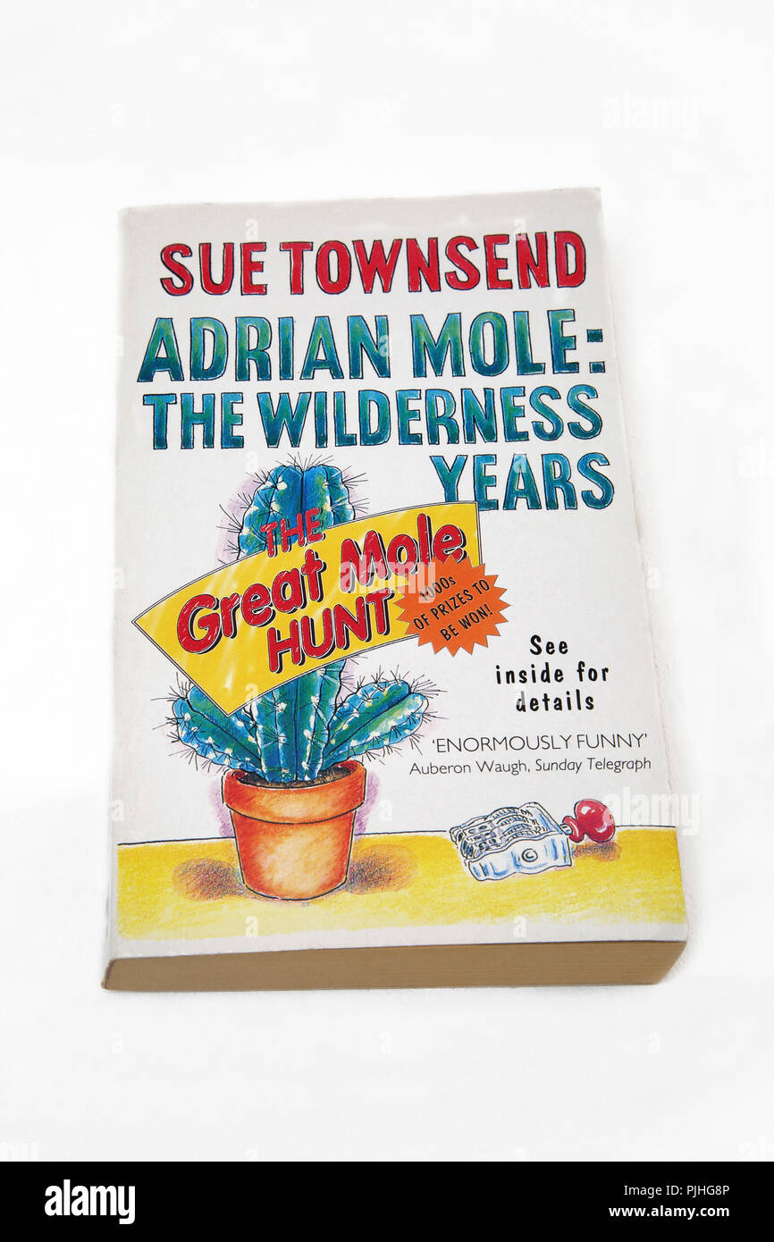 Adrian Mole: The Wilderness Years Paperback Book by Sue Townsend - Stock Image