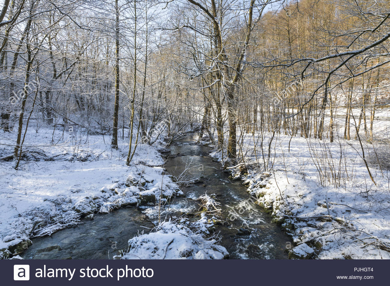 stream schede at schede valley at naturpark münden between mielenhausen and volkmarshausen, göttingen district, lower saxony, germany, february 2018 - Stock Image