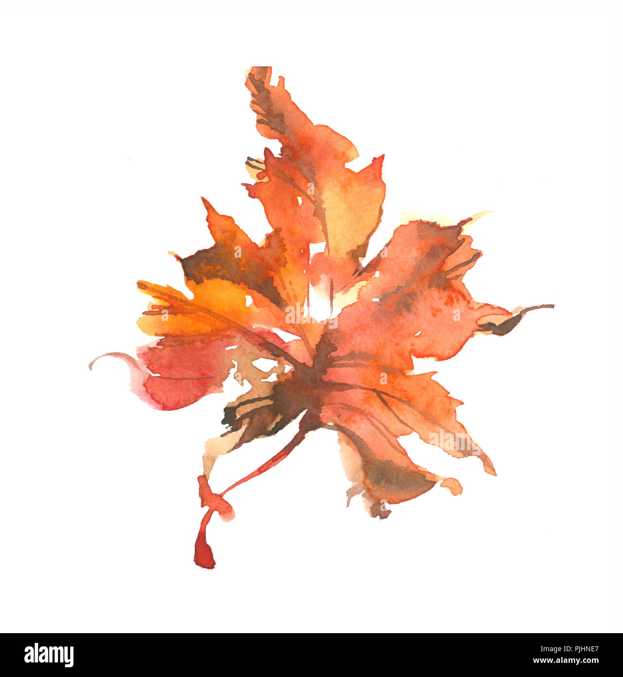 Beautiful bright autumn leaf. Watercolor autumn leaf.  Watercolor background. - Stock Image