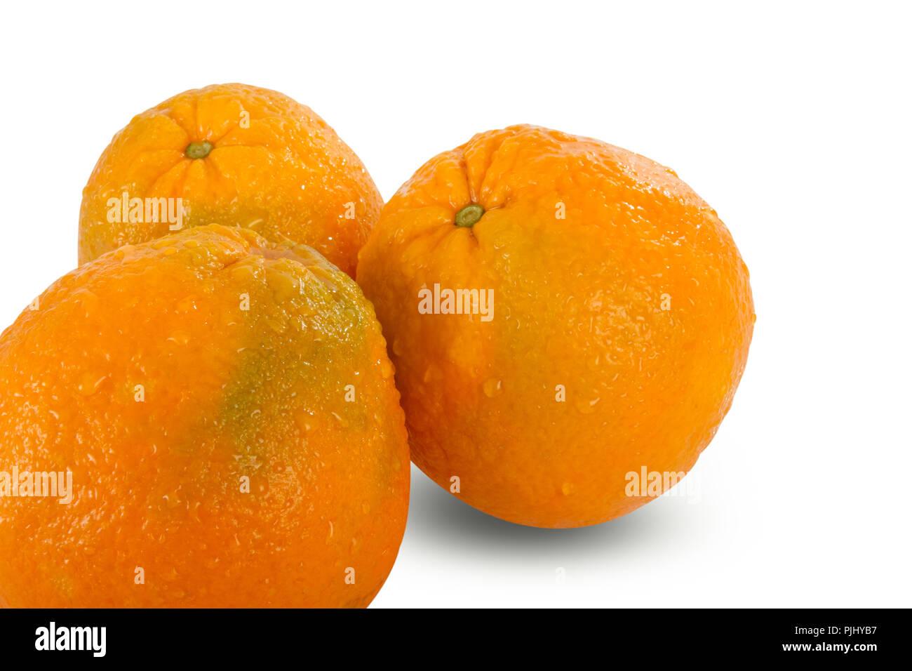 Fresh harvest juicy oranges isolated on white background. Nutrition and heathcare concept. - Stock Image