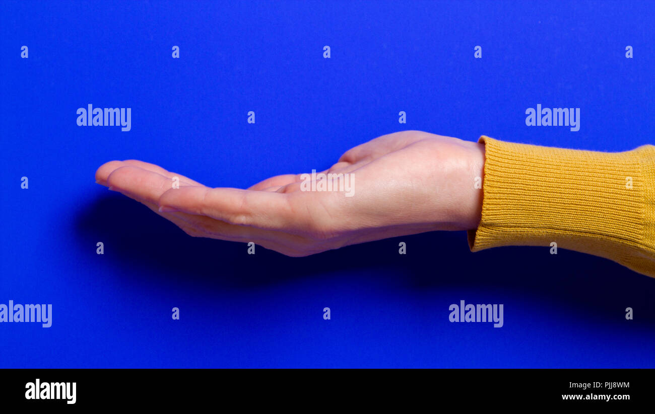 palm holding something. - Stock Image