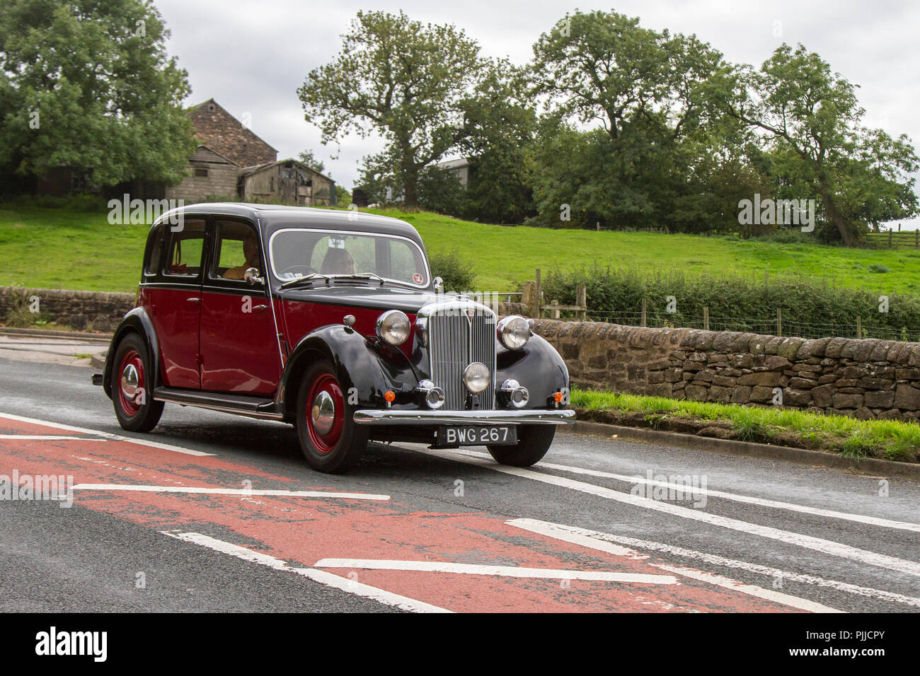 BWG267 Black Rover 75 Classic, vintage, veteran, cars of yesteryear, restored collectibles at Hoghton Tower Class Cars Rally, UK - Stock Image