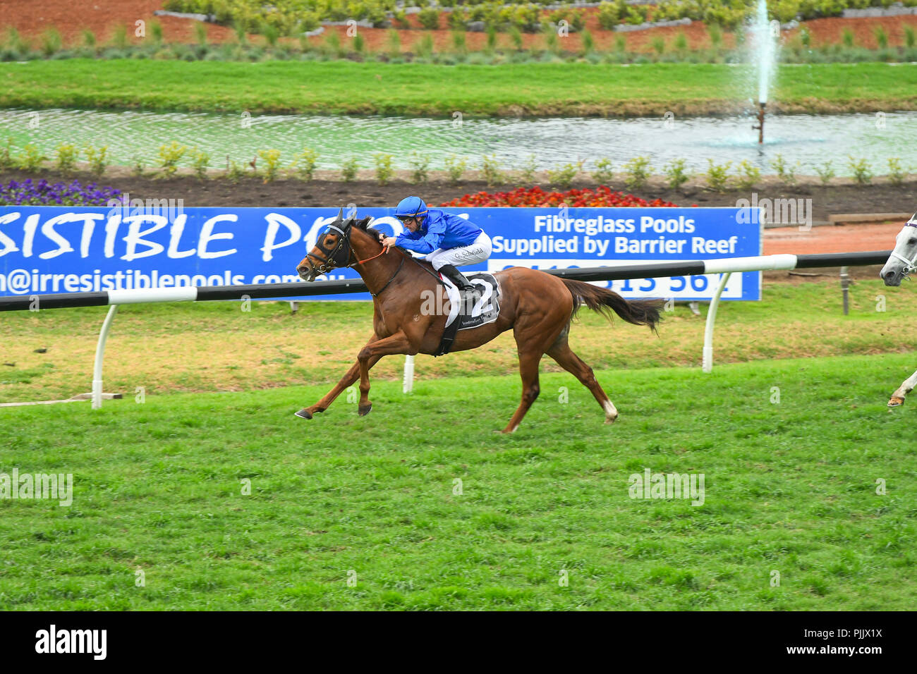Sydney, Australia  08 Sep 2018  Jockey Glyn Schofield rides Home Of