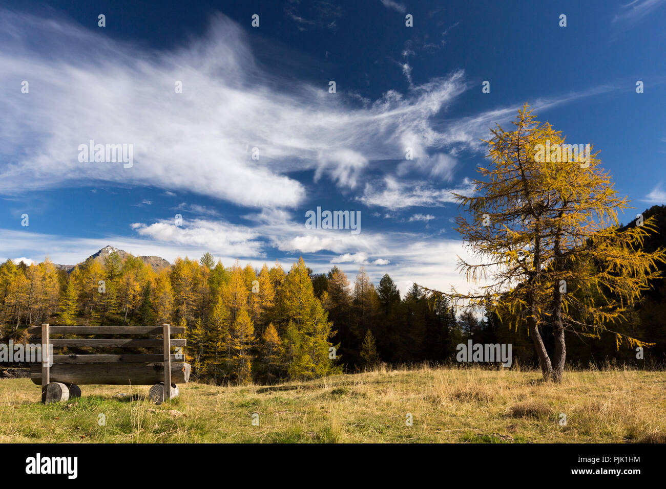 Light and shade determine the autumnal landscape at Lago Palü on Alp Grüm, canton of Grisons, Switzerland - Stock Image