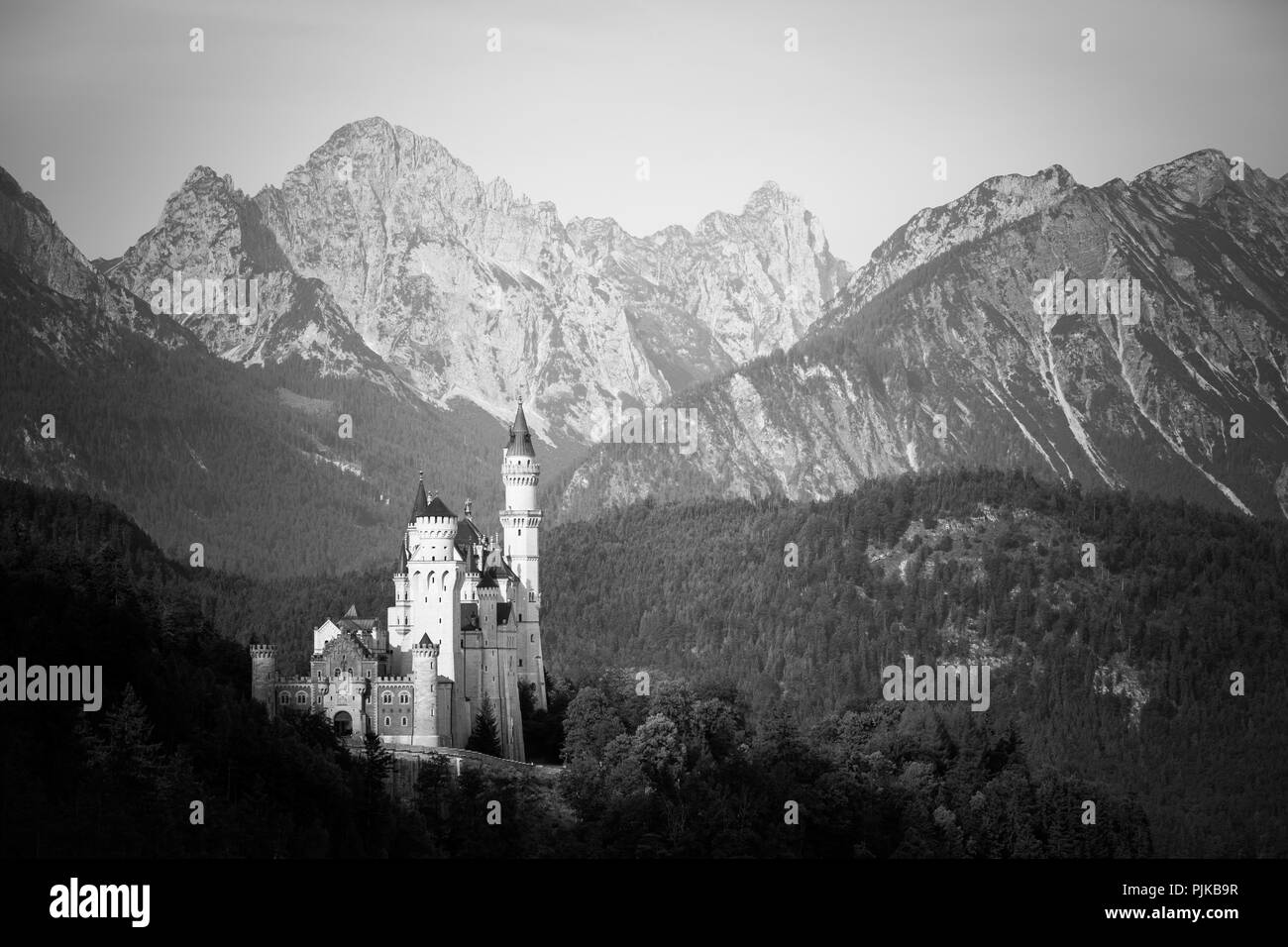 Beautiful monochrome view of world-famous Neuschwanstein Castle. Bavaria, Germany - Stock Image