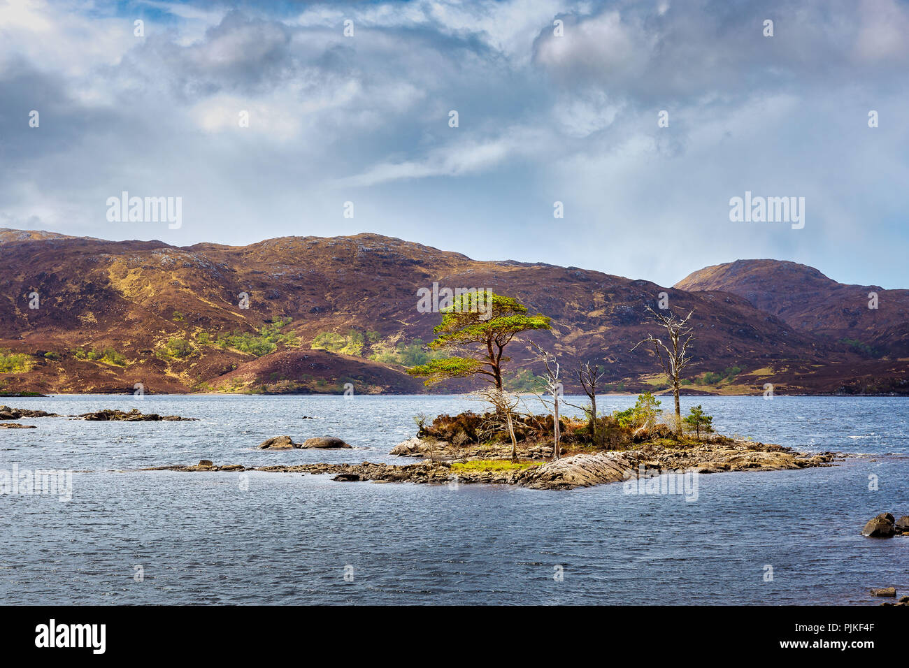 Little islands of Loch Assynt in the scottish highlands near Ardvreck Castle - Stock Image