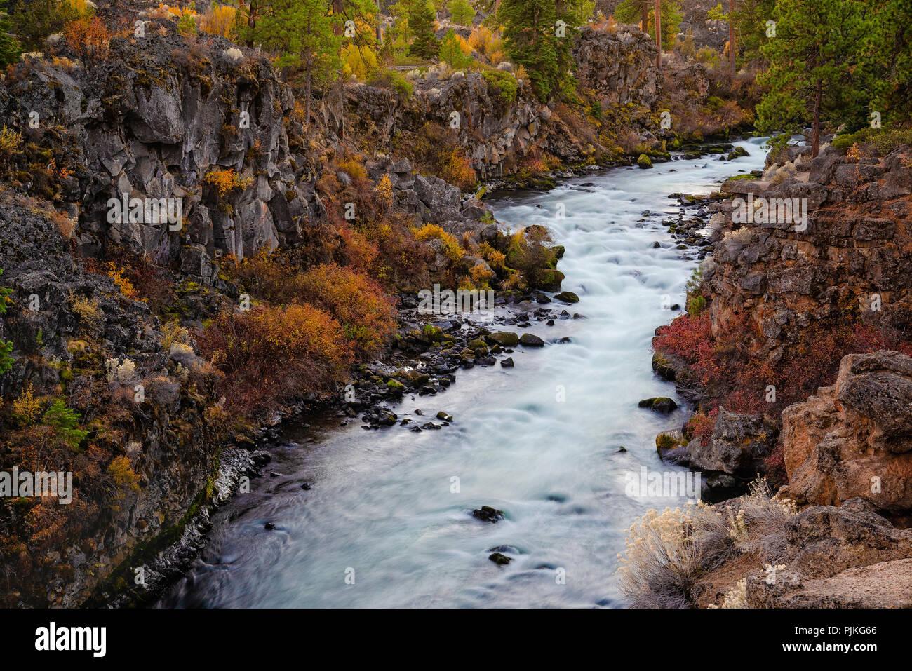 Dillon Falls on the Deschutes River; Deschutes National Forest, central Oregon. - Stock Image