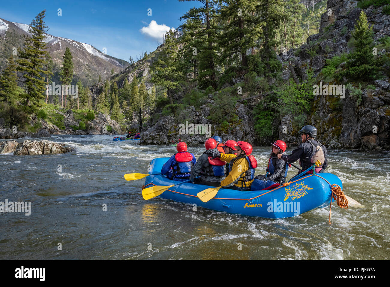 Whitewater rafting on the Middle Fork Salmon River in Idaho with Far and Away Adventures. - Stock Image
