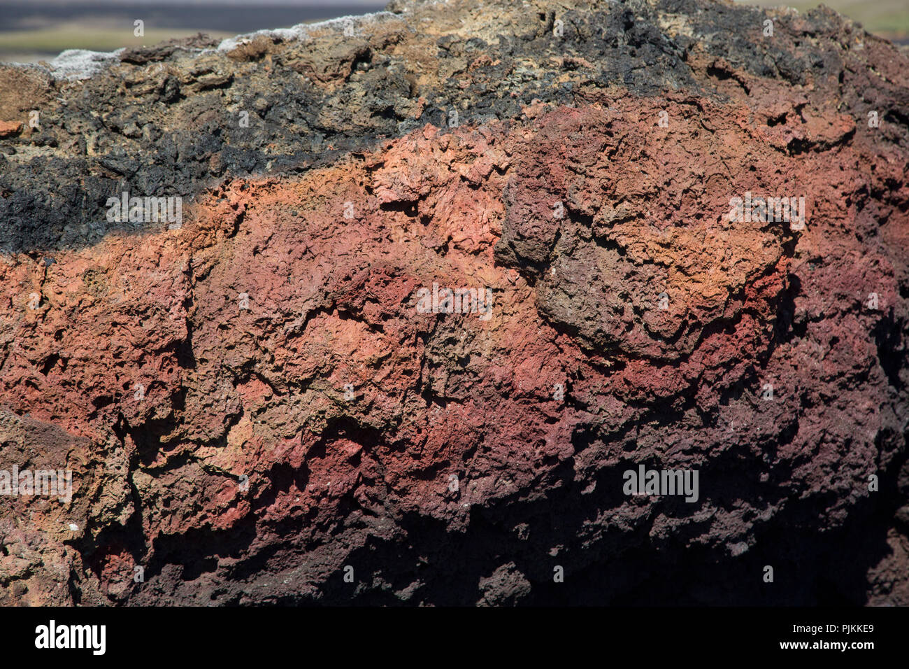 Iceland, Krafla district, cooled lava, detail, red, - Stock Image