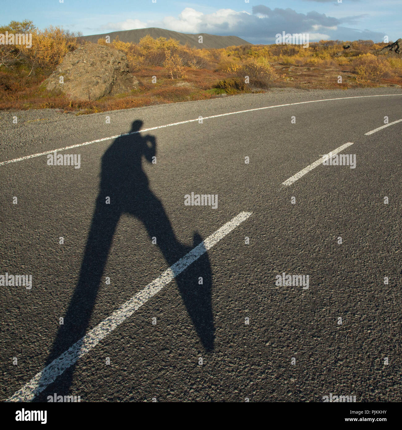 Iceland, Myvatn, human shadow on road, lava field Dimmuborgir, autumnal foliage, dwarf birches, - Stock Image