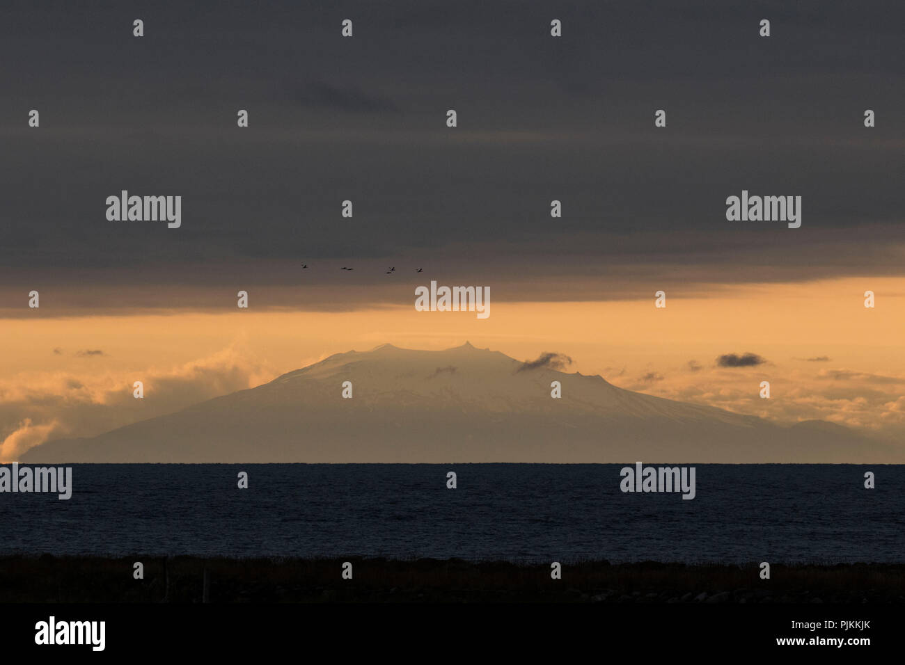 Iceland, volcano Snaefellsjökull, last evening light, distant view over the Faxafloi, stratovolcano, birds, Jules Verne, trip to the center of the earth, - Stock Image