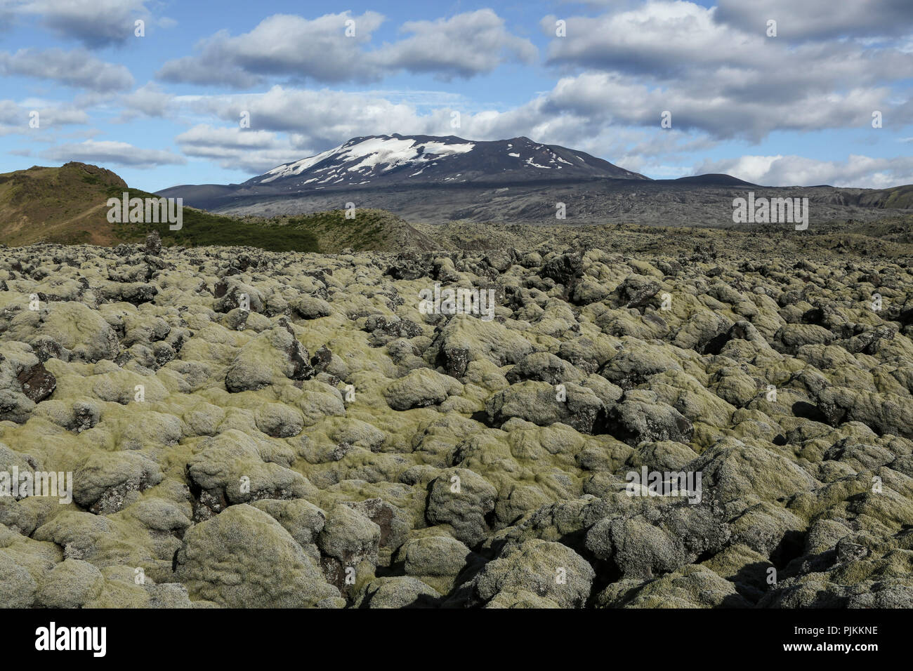Iceland, volcano Hekla, south Iceland, old lava field, moss-covered - Stock Image