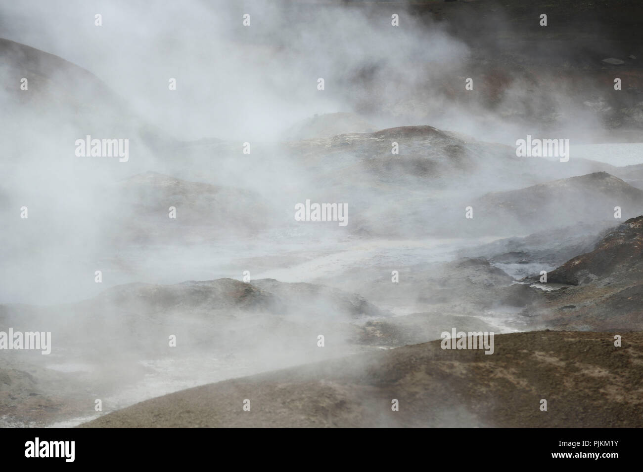 Iceland, hot springs, steam, high temperature zone, backlight Stock Photo