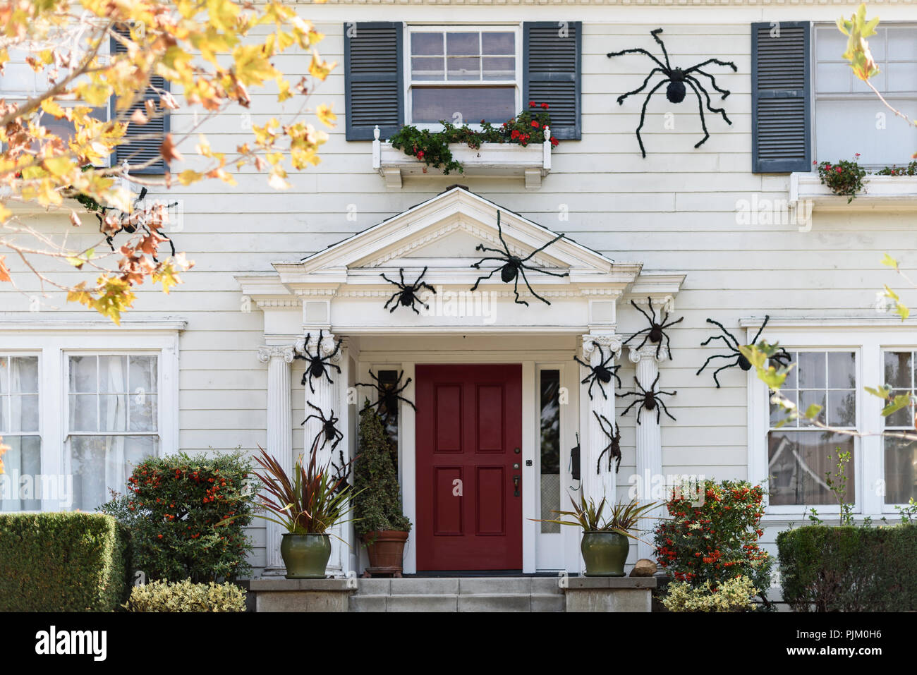 Halloween In Front Of House Decorations Stock Photo 218027746 Alamy