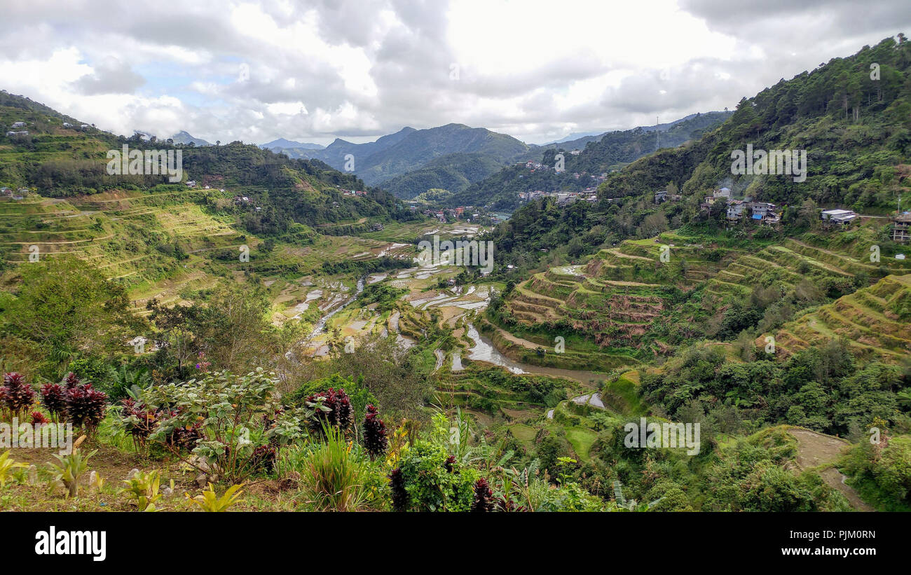 Rice terraces of Banaue on Luzon Island, Philippines - Stock Image