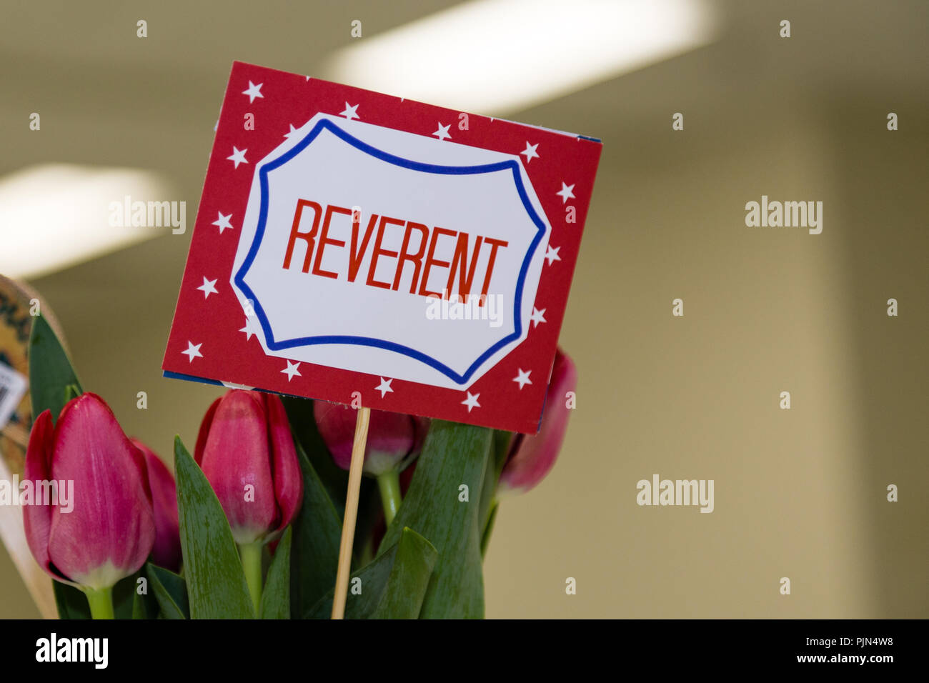 Scout is reverent small sign with flowers and space for text - Stock Image